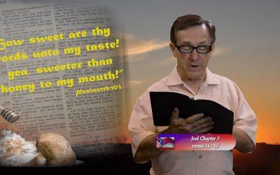 Joel 3:14-16